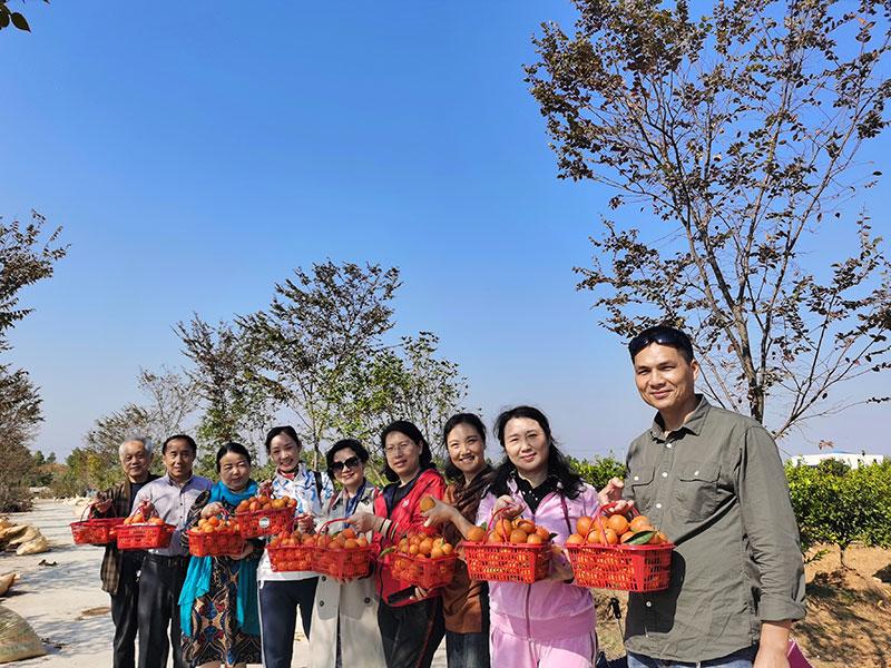 华中师范大学教授来新博村调研乡村振兴
